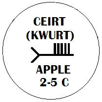 Ceirt - Apple Ogham